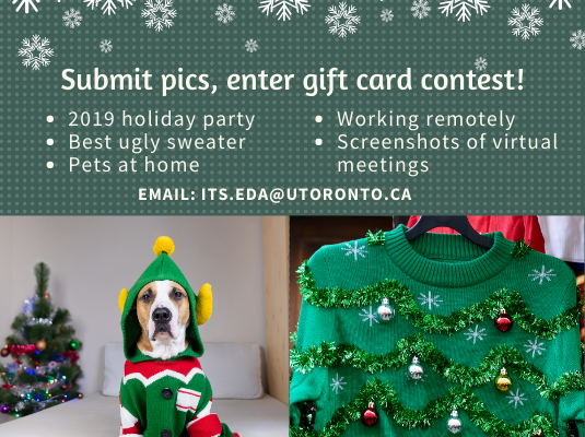 Photo of dog in holiday sweater, ugly sweater and promotion for ITS photo contest